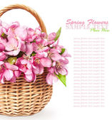 Basket with pink spring flowers — Stock Photo