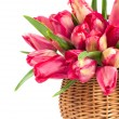 Stock Photo: Red tulips in wicker basket