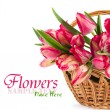 Stock Photo: Tulips in wicker basket