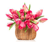 Tulips in a wicker basket — Stock Photo