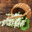 Постер, плакат: Bouquet of lilies of the valley in a wicker basket
