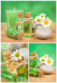 Spa collage with camomile — Stock Photo
