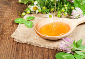Honey in a wooden spoon — Stock Photo