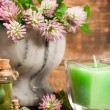 Stock Photo: Clover in stone mortar with candle