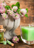 Clover in a stone mortar with a candle — Stok fotoğraf