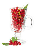 Ripe red currants in a glass — Stock Photo