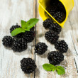 Small bucket of blackberries — Stock Photo