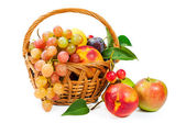 Basket of fruit : apples , grapes , peaches and plums — Stock Photo