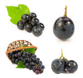 Set of images with a blue grapes — Stock Photo