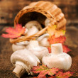 Stock Photo: Mushrooms with autumn leaves , and wicker basket close-up