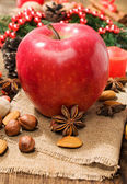 Red winter apple with nuts and star anise — Stock Photo