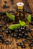 Bottle of essential oil and berries elderberry — Stock Photo