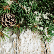 Spruce branches with cones and snow  — Stock Photo #35935217