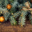 Spruce branches with decorations — Stock Photo #36070459