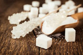 Several types of white sugar — Stock Photo