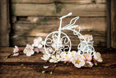 Apricot blossoms and decorative bicycle  — Stock Photo