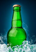 Bottle of beer with ice — Stock Photo