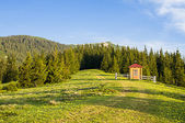 Mountain valley on a sunny morning  — Stockfoto