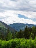 Ukrainian Carpathians — Stock Photo