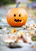 Pumpkinon a wall with autum leaves — Stock Photo
