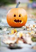 Pumpkinon un mur avec autum leaves — Photo