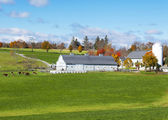 Traditional New England farm — Stock Photo