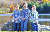 Three brothers — Stock Photo
