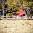 Red barn with horse on farm — Stock Photo
