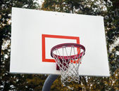 Basketball hoop with autumn leaves in background — Stok fotoğraf