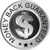 Money Back Guaranteed Silver — Stock Vector