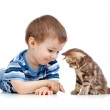Kid playing with cat pet — Stock Photo #10564212