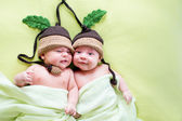Twins twee broers baby's weared in eikel hoeden — Stockfoto
