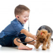 Boy child examining dog puppy isolated on white background — Stock Photo #18473143