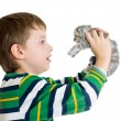 Kid boy with kitten isolated on white background - Lizenzfreies Foto