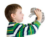 Kid boy with kitten isolated on white background — Stock Photo