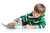 Funny child feeding attractive kitten — Stock Photo