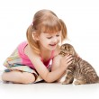 Funny child playing with Scottish kitten — Stock Photo #20109599