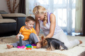 Mãe, criança menino e cachorro de estimação brincando juntos indoor — Foto Stock