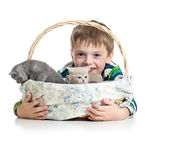 Kid boy with kittens isolated on white background — Fotografia Stock