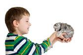 小猫被隔绝在白色背景上的孩子男孩 — 图库照片