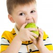 Kid boy eating green apple, isolated on white — Stock Photo #23924051