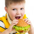 Child boy eating hamburger — Stock Photo