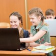 Stock Photo: Schoolkids using laptop at lesson