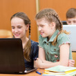 Stock Photo: Pupils using laptop at lesson