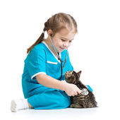 Kid girl playing doctor with kitten isolated — Stok fotoğraf
