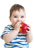 Portrait of baby boy holding and eating red apple, isolated on w — Stock Photo