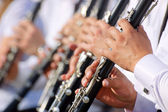 Clarinet theme — Stock Photo