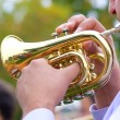 Cornet in street wind orchestra — Stock Photo