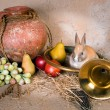 Hunting still life with rabbit - Stock Photo