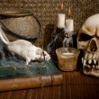 Stock Photo: Rat and skull